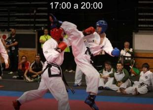 artes marciales mugendo kickboxing competicion wamai